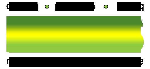 Strategi Judi Online DominoQQ Focus Fitness Logo